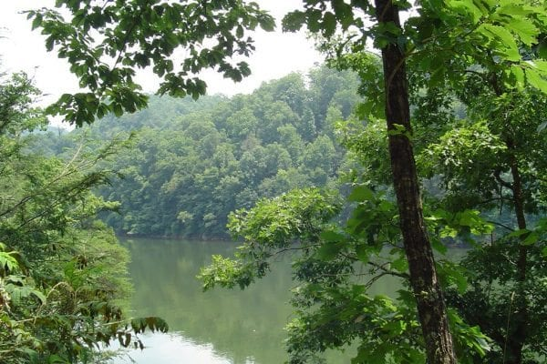 Lot 62+- Acres in Fontana Lake Estates