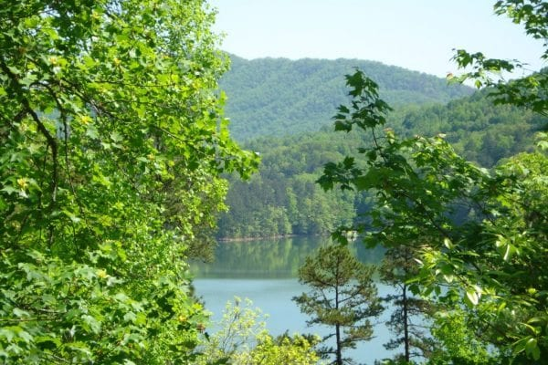 Lot 124-3 Alarka Point-Fontana Lake Estates