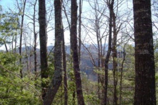 Lot 56-3 Lakeview Trail