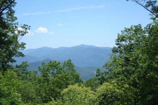 Lot 83 Round Top & Doubletree Almond, NC 28702