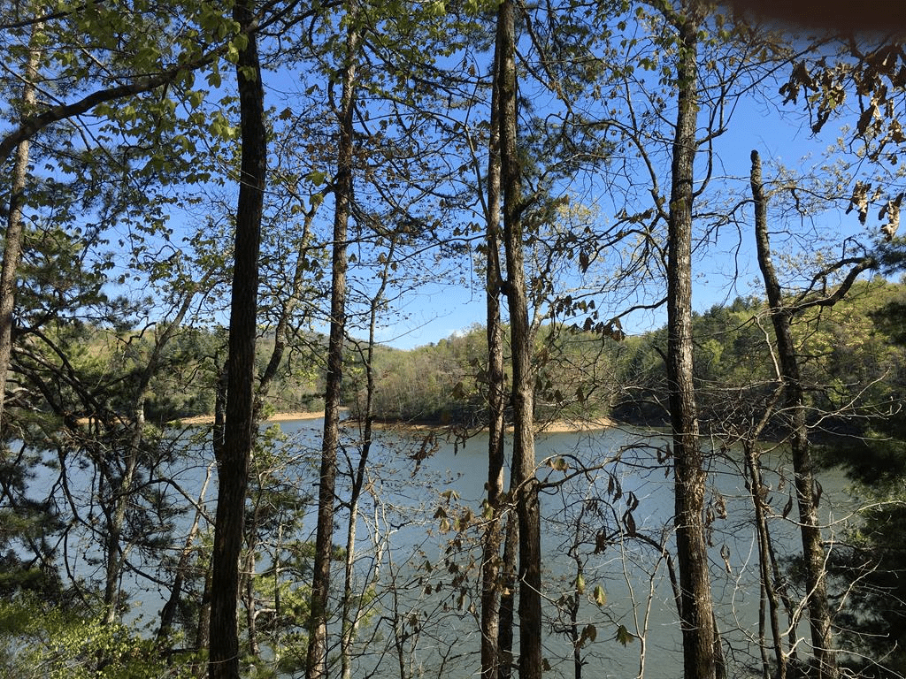 19-1 Lakes Way-Fontana Lake Estates