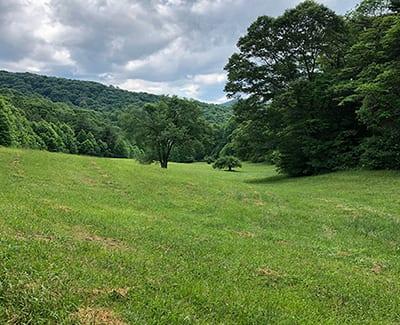 50 Acres – Big Springs, Yellow Creek, Robbinsville, NC