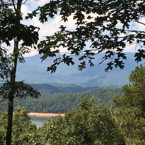 Lot 95-2 Wild Orchid Tr., Bryson City, NC 28713