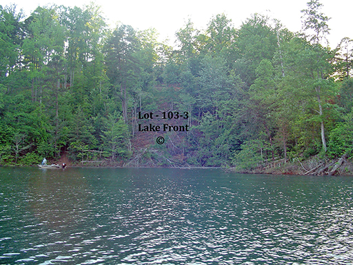 Lot 103-3 Rocky Bluff Bryson City, NC 28713