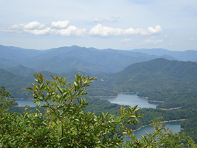 Lot 63 Cloudline, Almond, NC 28702